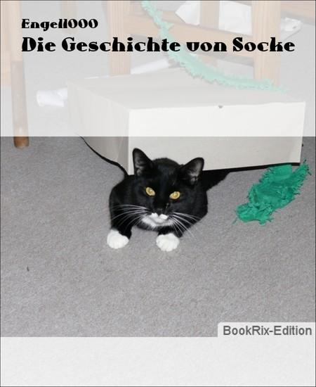 Die Geschichte von Socke - Blick ins Buch