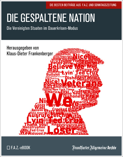Die gespaltene Nation - Blick ins Buch