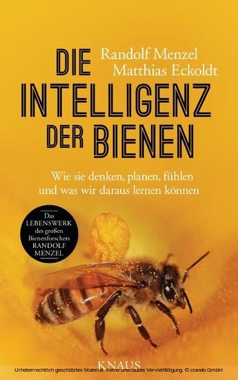 Die Intelligenz der Bienen - Blick ins Buch