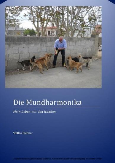 Die Mundharmonika - Blick ins Buch