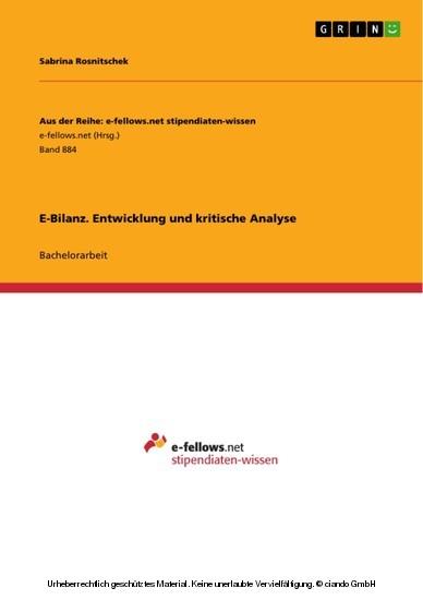 E-Bilanz. Entwicklung und kritische Analyse - Blick ins Buch
