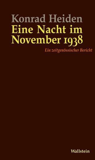 Eine Nacht im November 1938 - Blick ins Buch