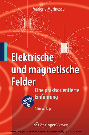 Elektrische und magnetische Felder - Blick ins Buch