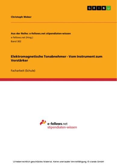 Elektromagnetische Tonabnehmer - Vom Instrument zum Verstärker - Blick ins Buch