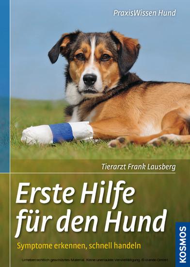Erste Hilfe für den Hund - Blick ins Buch