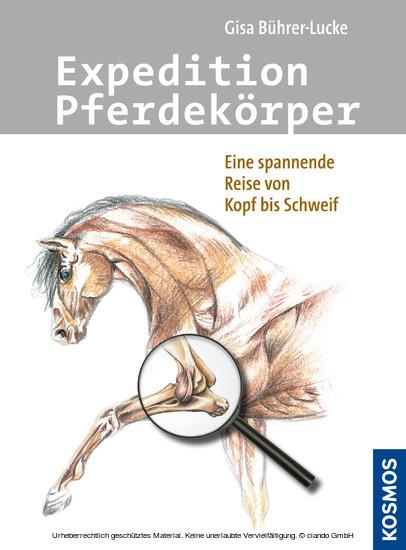 Expedition Pferdekörper - Blick ins Buch