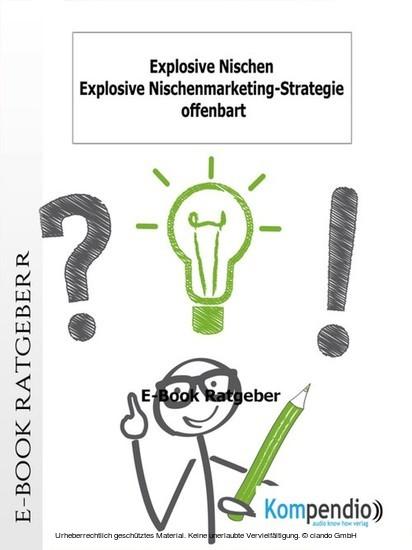 Explosive Nischen - Blick ins Buch