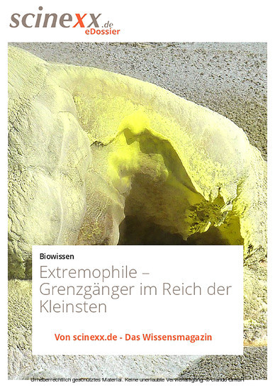 Extremophile - Blick ins Buch