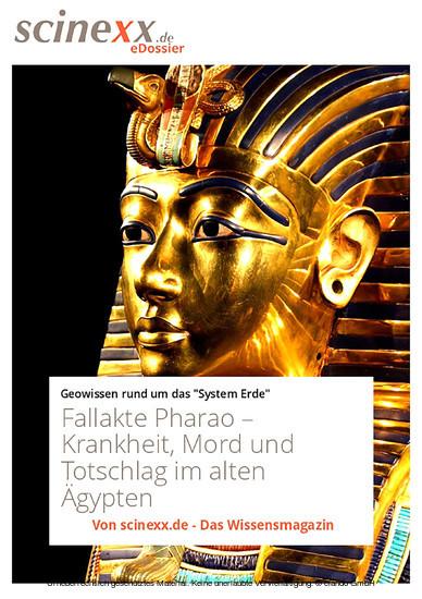 Fallakte Pharao - Blick ins Buch