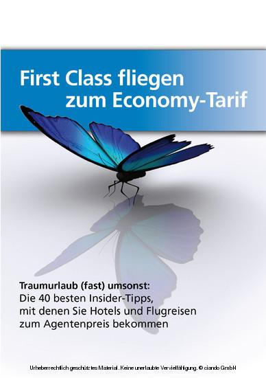 First-Class fliegen zum Economy-Tarif - Blick ins Buch