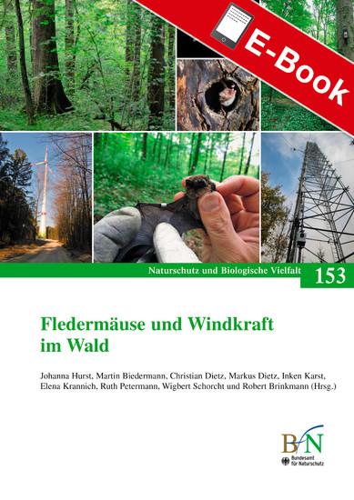 Fledermäuse und Windkraft im Wald - Blick ins Buch