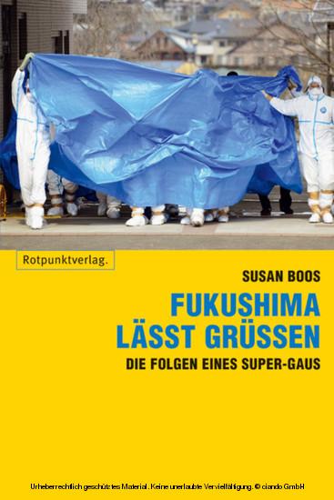 Fukushima lässt grüssen - Blick ins Buch
