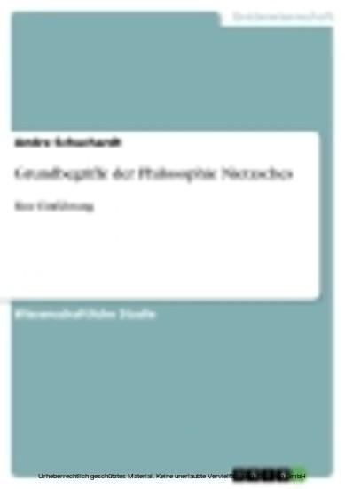 Grundbegriffe der Philosophie Nietzsches - Blick ins Buch