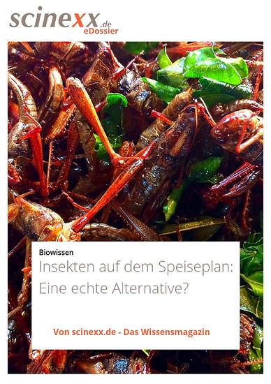 Insekten auf dem Speiseplan - Blick ins Buch