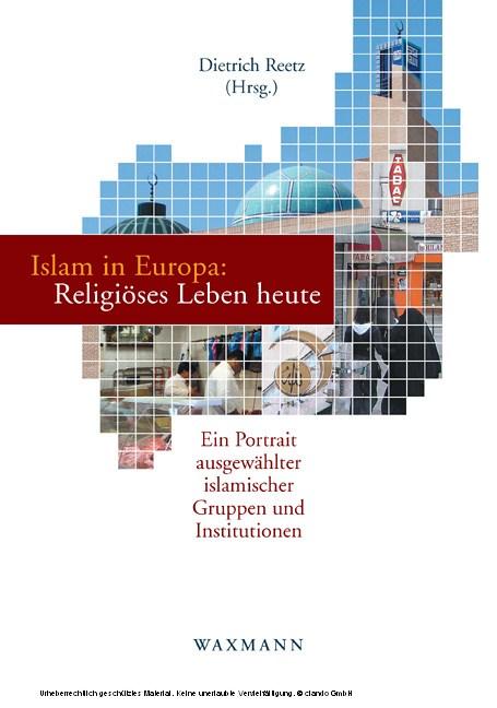 Islam in Europa: Religiöses Leben heute. Ein Portrait ausgewählter islamischer Gruppen und Institutionen - Blick ins Buch