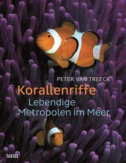 Korallenriffe - Blick ins Buch