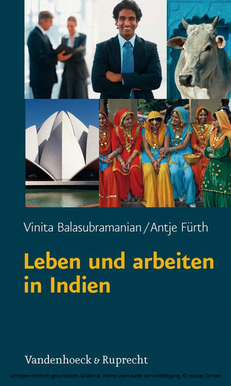 Leben und arbeiten in Indien - Blick ins Buch