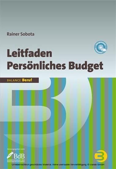Leitfaden Persönliches Budget - Blick ins Buch