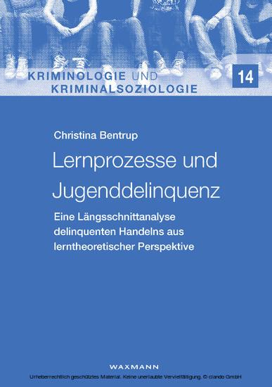 Lernprozesse und Jugenddelinquenz - Blick ins Buch
