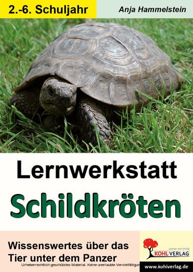 Lernwerkstatt Schildkröten - Blick ins Buch