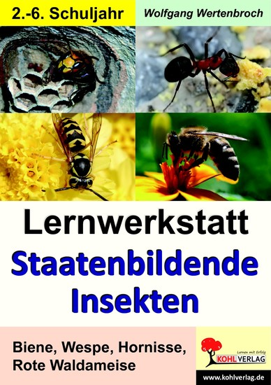 Lernwerkstatt Staatenbildende Insekten - Blick ins Buch