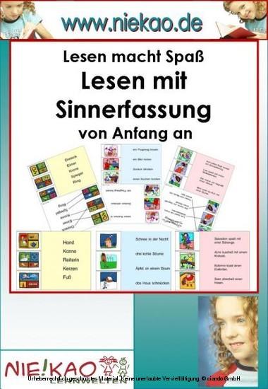 Lesen mit Sinnerfassung von Anfang an - Kartei ab Kl.1 - Blick ins Buch