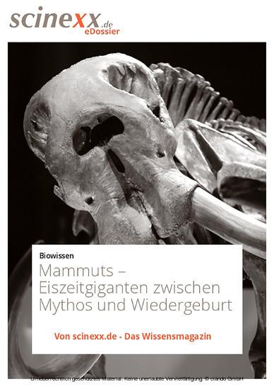 Mammuts - Blick ins Buch