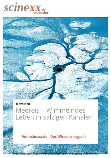 Meereis - Blick ins Buch