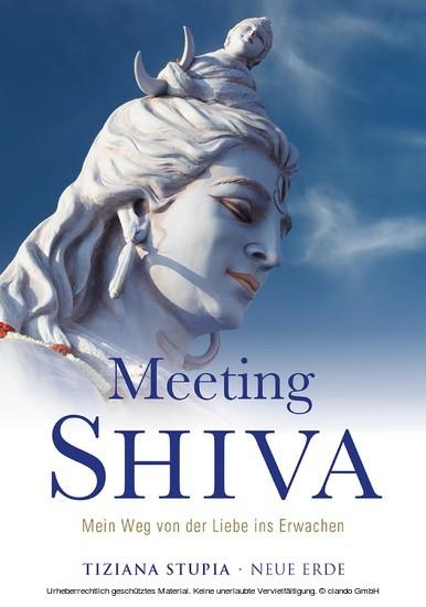 Meeting Shiva - Blick ins Buch