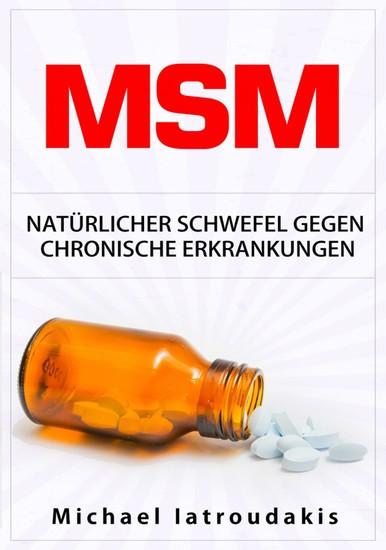 MSM - Blick ins Buch