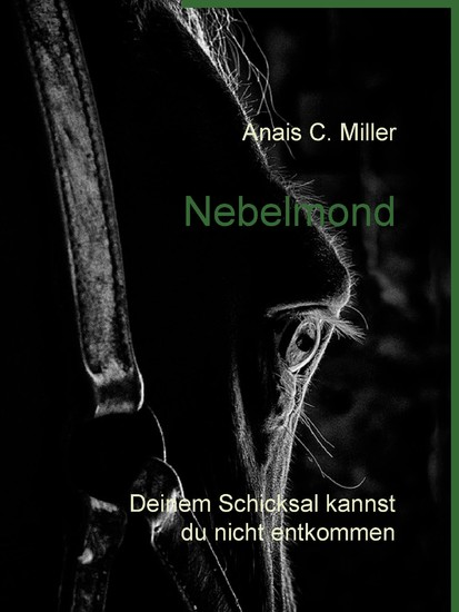 Nebelmond - Blick ins Buch