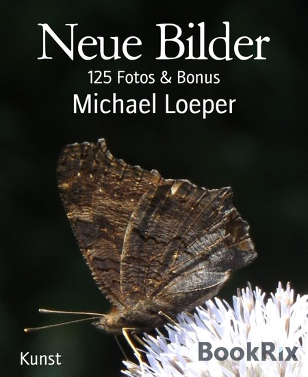 Neue Bilder - Blick ins Buch