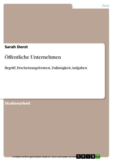 Öffentliche Unternehmen - Blick ins Buch