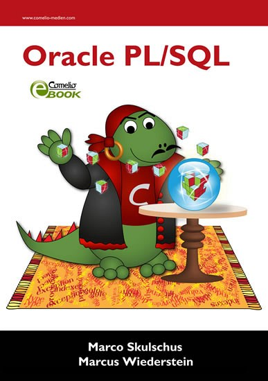 Oracle PL/SQL - Blick ins Buch
