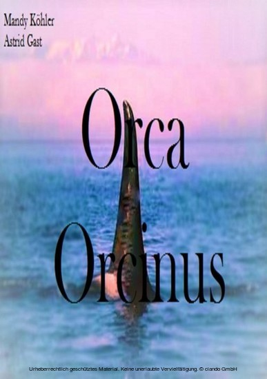 Orca Orcinus - Blick ins Buch