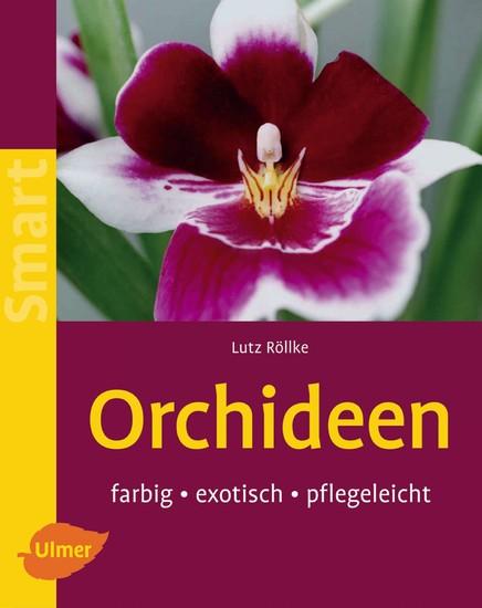 Orchideen - Blick ins Buch