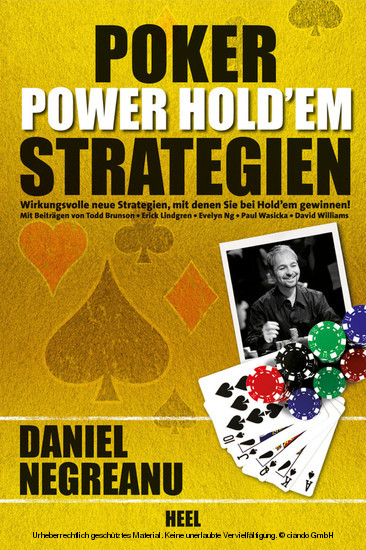Poker Power Hold'em Strategien - Blick ins Buch