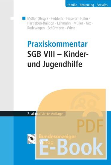 Praxiskommentar SGB VIII - Kinder- und Jugendhilfe (E-Book) - Blick ins Buch