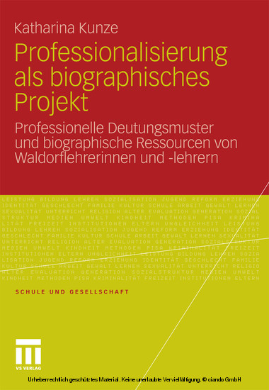 Professionalisierung als biographisches Projekt - Blick ins Buch