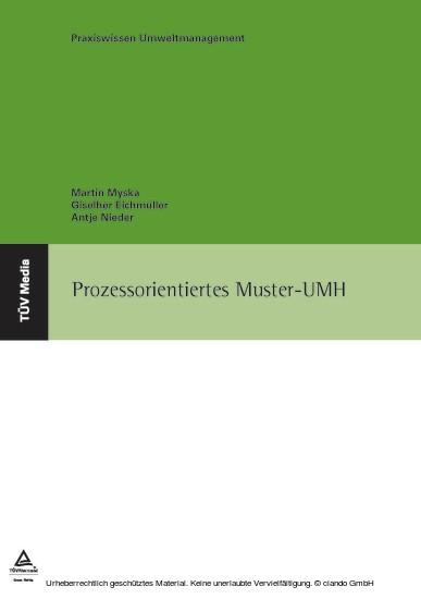 Prozessorientiertes Muster-UMH - Blick ins Buch