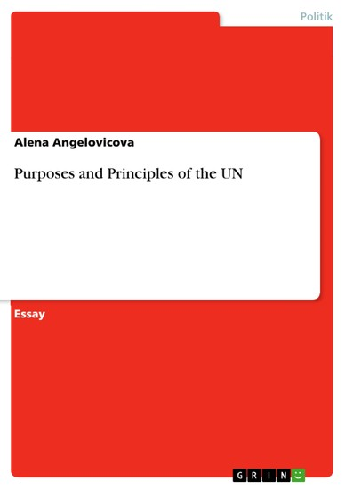 Purposes and Principles of the UN - Blick ins Buch