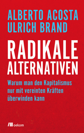 Radikale Alternativen - Blick ins Buch
