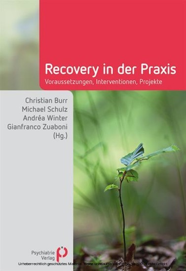 Recovery in der Praxis - Blick ins Buch