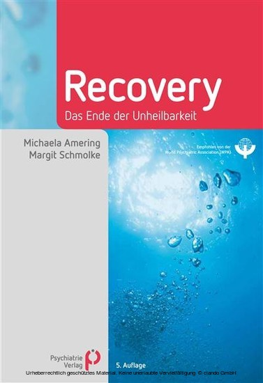 Recovery - Blick ins Buch