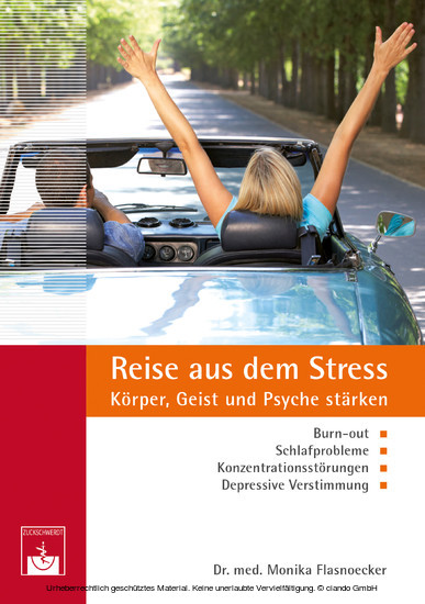 Reise aus dem Stress - Blick ins Buch