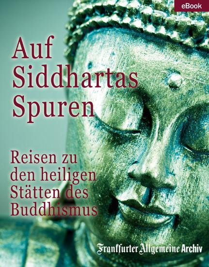 Auf Siddhartas Spuren - Blick ins Buch