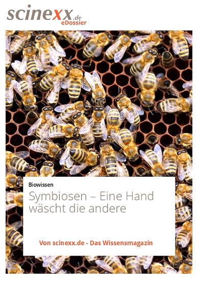 Symbiosen - Blick ins Buch