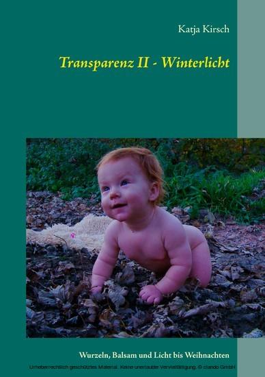 Transparenz II - Winterlicht - Blick ins Buch
