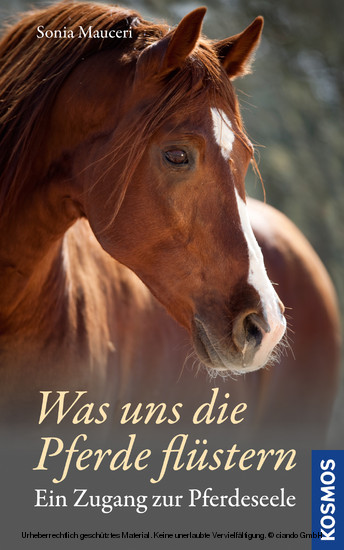 Was uns die Pferde flüstern - Blick ins Buch