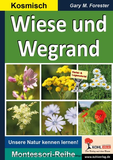 Wiese und Wegrand - Blick ins Buch